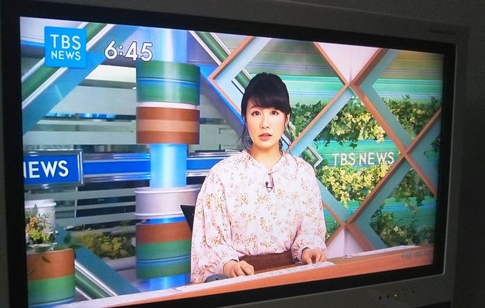 TBSニュースがテレビに映っている様子